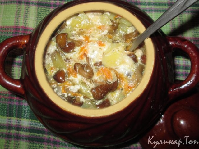 Мясо в горшочках с картошкой и с сыром в духовке пошаговый рецепт с фото